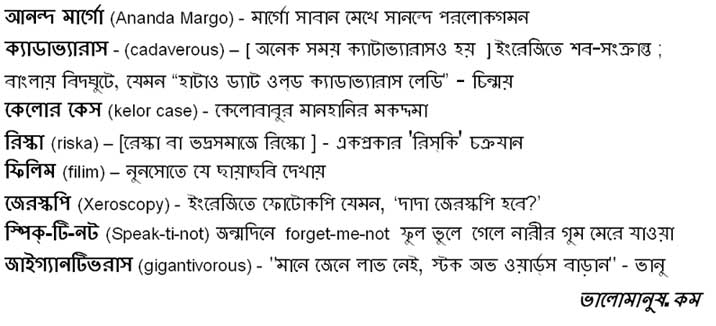 bangla definitons you won't find in a dictionary