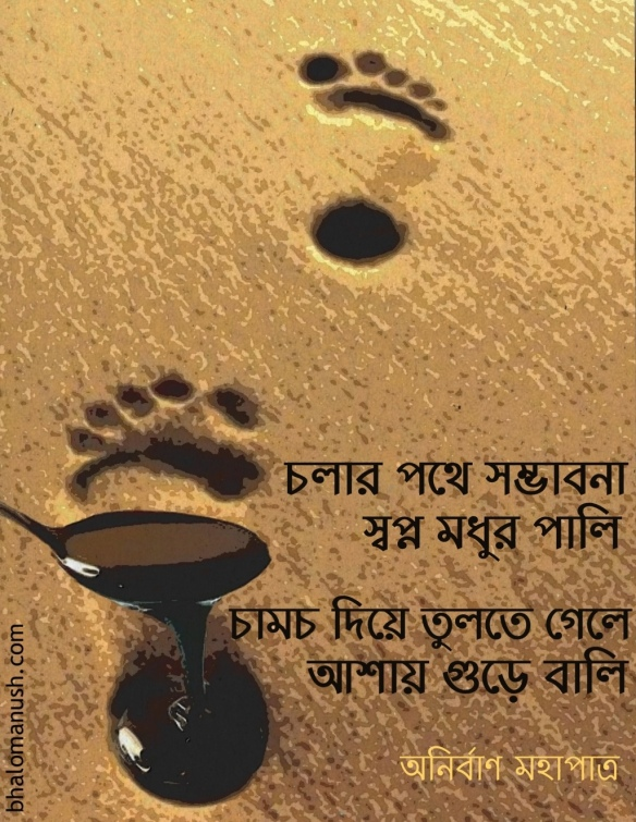 20120819-131611.jpg
